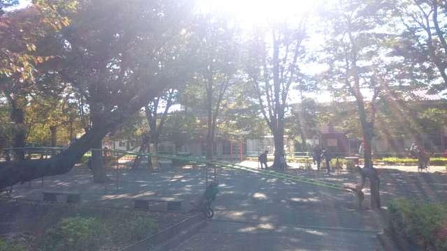 setagaya-park-children's-park-001