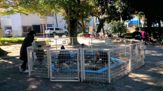 setagaya-park-children's-park-005