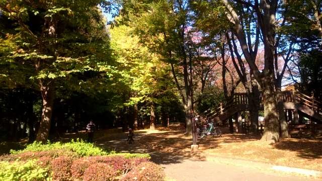setagaya-park-jogging-course-001