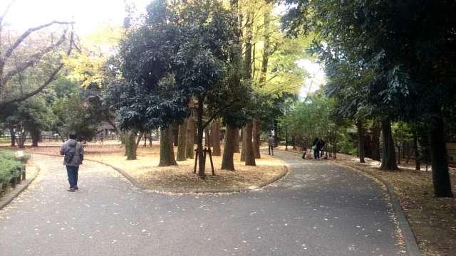 setagaya-park-jogging-course-002