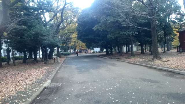 setagaya-park-jogging-course-005