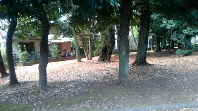 setagaya-park-jogging-course-006