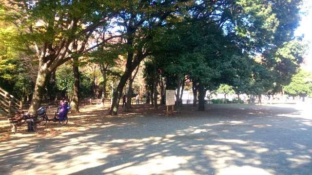 setagaya-park-kaede-003