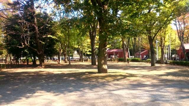 setagaya-park-kaede-004