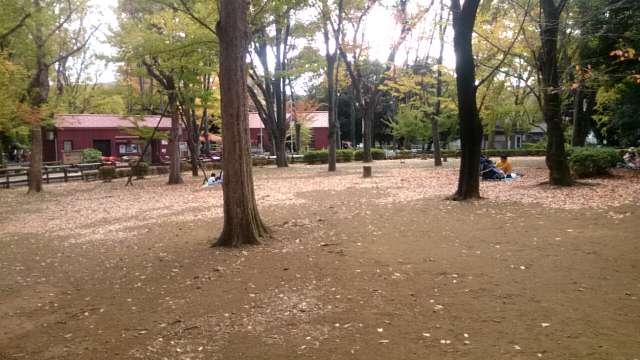 setagaya-park-kaede-005