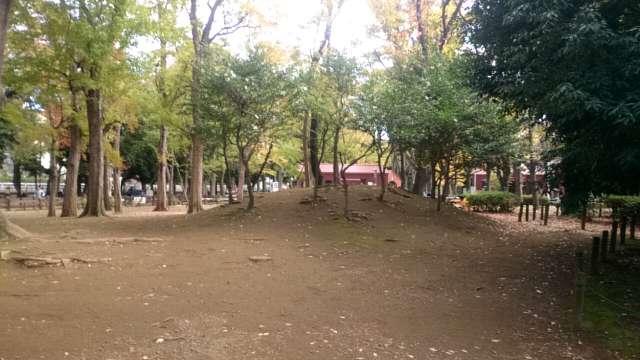setagaya-park-kaede-007