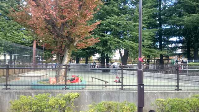setagaya-park-skateboard-001
