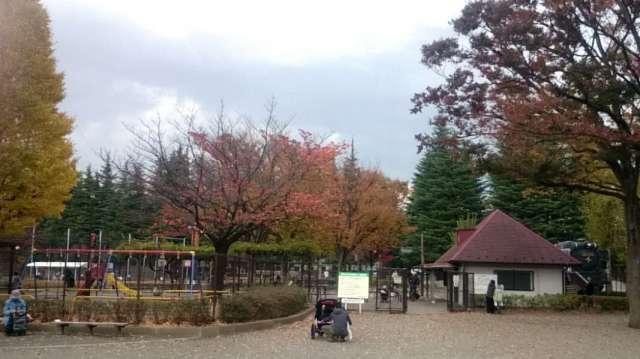 setagaya-park-traffic-park-001